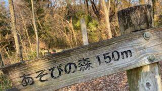 野山北公園・六道山公園の遊びの森